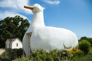The Big Duck in Flanders, NY is a well-known landmark.